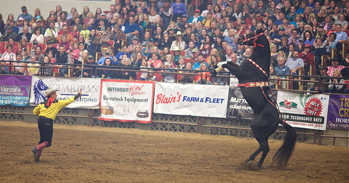 2020 Ohio State Fair Equine Show.April 12 14 Madison Wisconsin Midwest Horse Fair