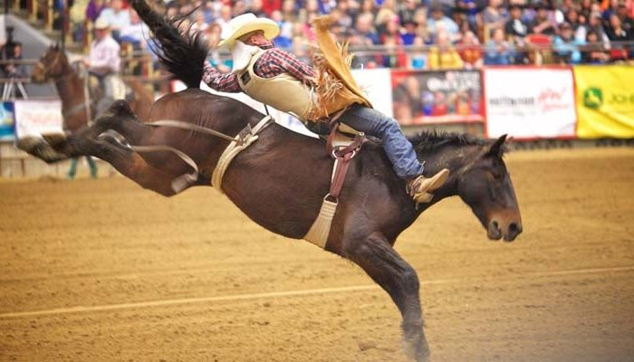 2 Nights of PRCA Rodeo