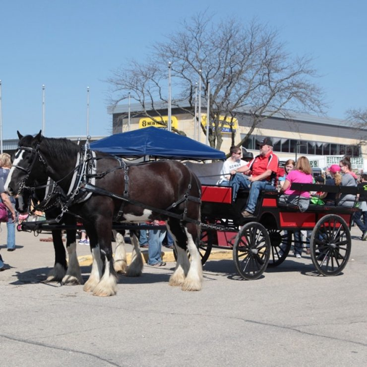 Carriage Rides 3