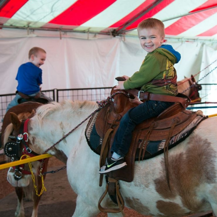 Pony Rides 3