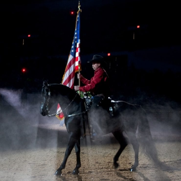 Beautiful Horse And Flag